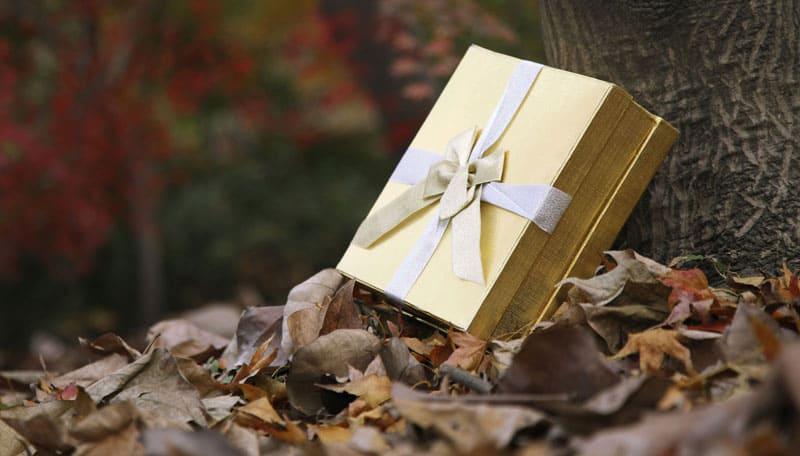 Læs om 5 perfekte gaver til grillmesteren